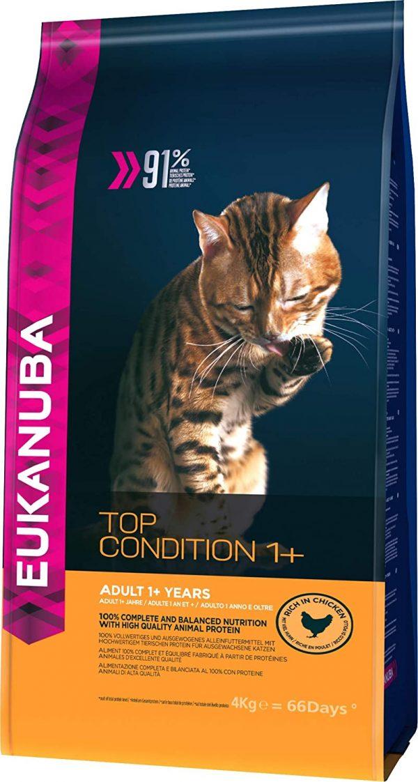 Eukanuba cibo per gatti