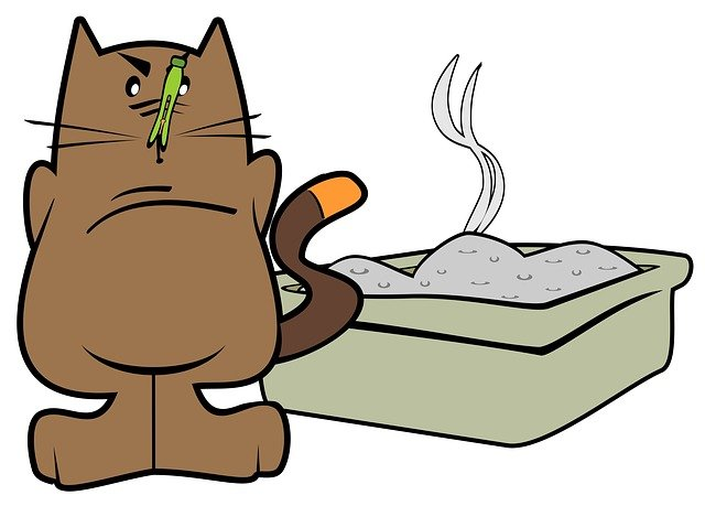 lettiera per gatti economica